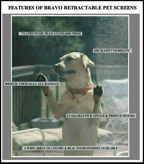 Pet Screen – A Great Way To Protect Your Windows and Doors