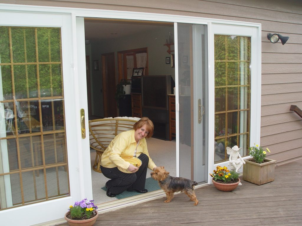 Best Retractable Screens for Doors